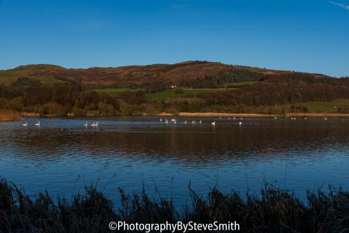 A Cold Day At Lochore